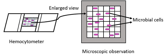 direct microscopic count
