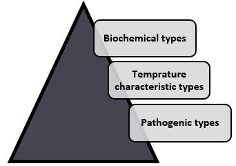 microorganisms type