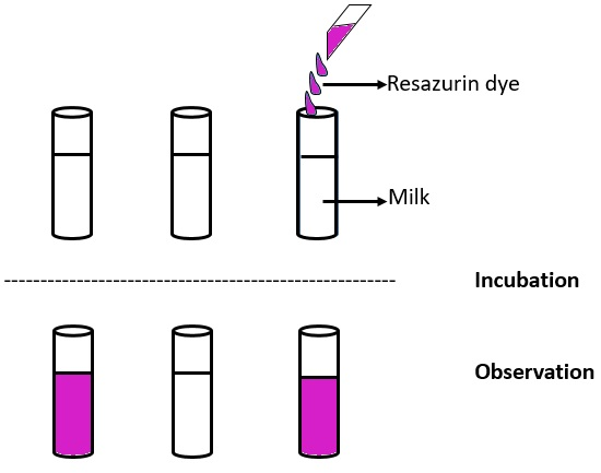 resazurin test