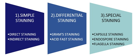 sub types of staining