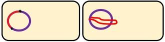 LYSOGENIC E1