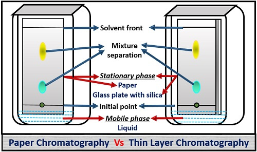 paper Vs thin layer chromatography