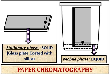 solid liquid adsorption in paper chromatography