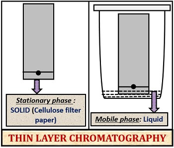 solid liquid adsorption in thin layer chromatography