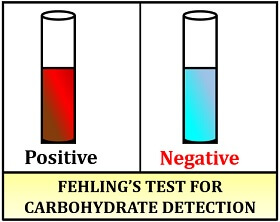 fehling's test