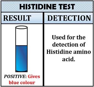 histidine tset