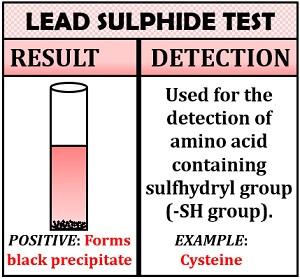 lead sulphide test