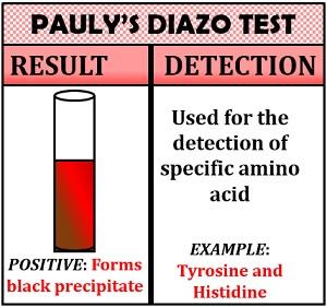 pauly's diazo test