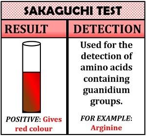sakaguchi test