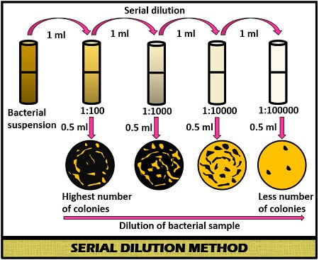 serial dilution method