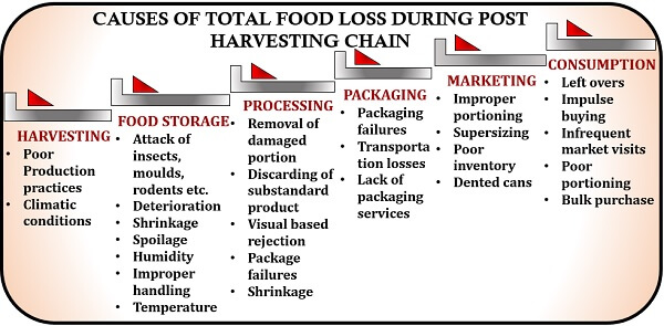 Causes of post harvest losses