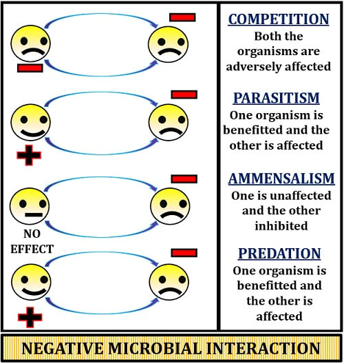 Negative microbial interaction