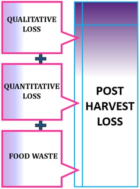 Types of Post Harvest Losses
