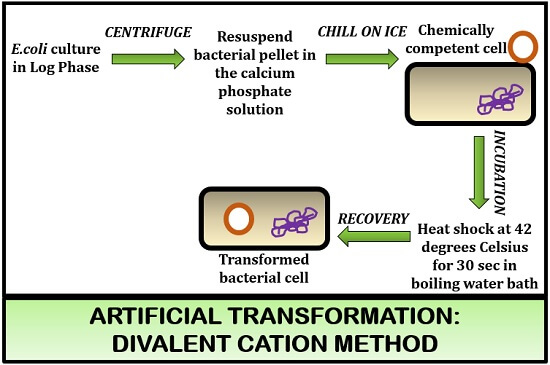 divalent cation method