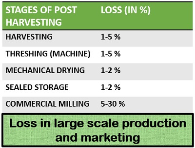 loss in large scale production