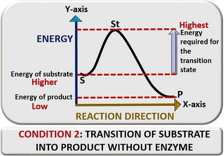 transtion reaction without enzyme