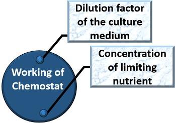 working of chemostat