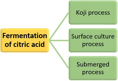 fermentation of citric acid