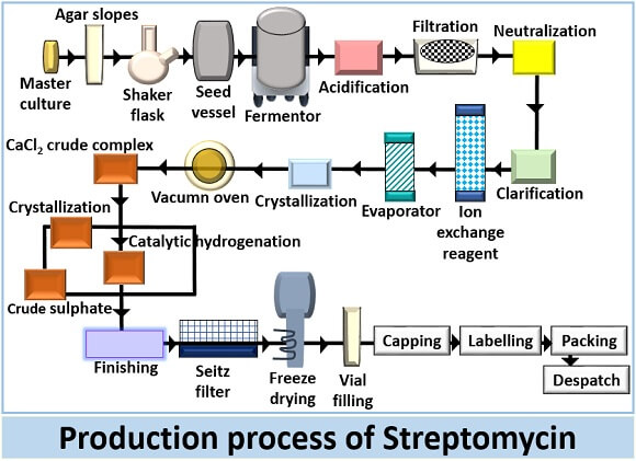 production process of streptomycin