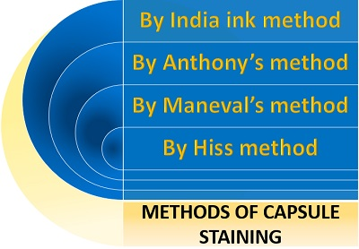 methods of capsule staining