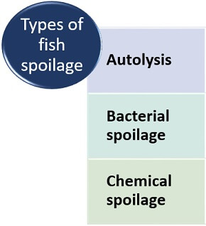 types of fish spoilage