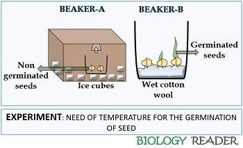 necessary of temperature