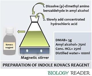 preparation of kovacs reagent