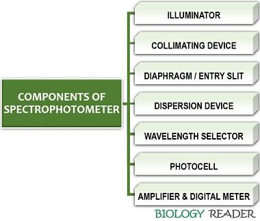 components of spectrophotometer