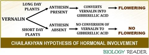 chailakhyan hypothesis of hormonal involvement