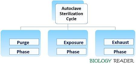 Autoclave sterilization cycle