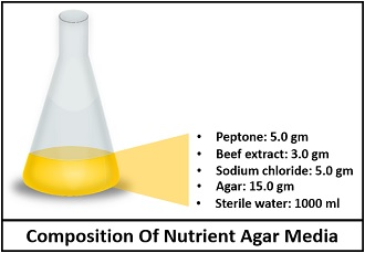 Composition of nutrient agar media