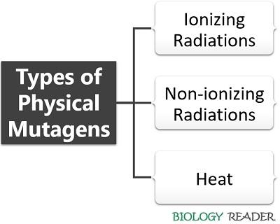 types of physical mutagens
