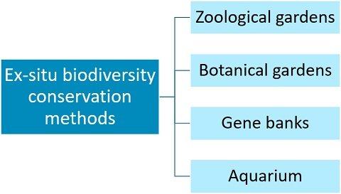 Methods of ex-situ conservation